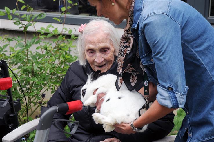 Margit Lovise Hjelvold fra Kollsroa trives godt med dyr, og denne kaninen kom på besøk på 102-årsdagen.
